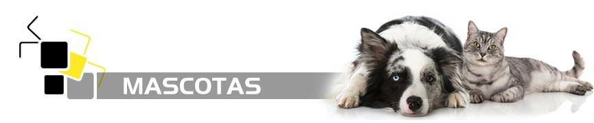 Deshágase de las plagas relacionadas con gatos y perros