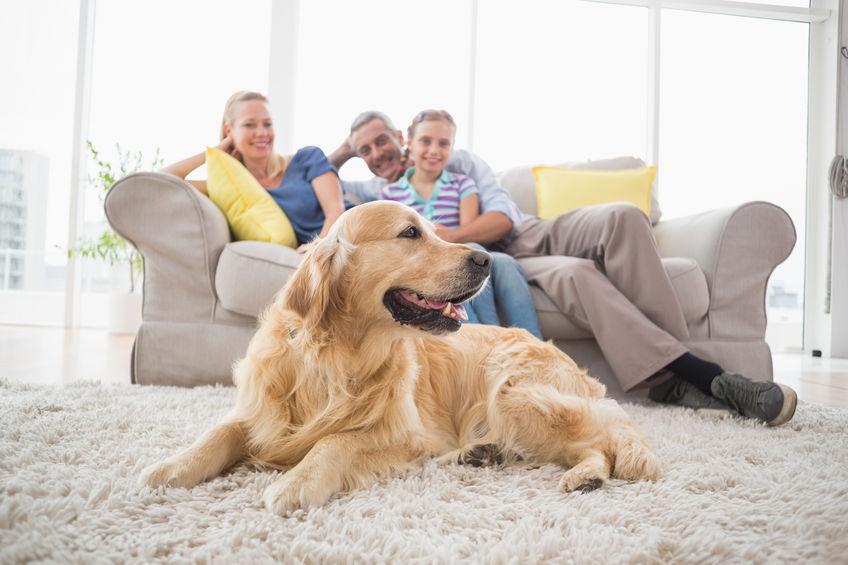 Familio con perro